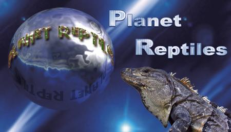 Planet Reptiles